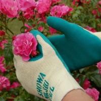 10 dụng cụ không thể thiếu trong làm vườn