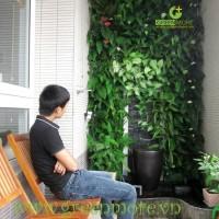Khảo sát nhu cầu sử dụng vườn đứng của khách hàng