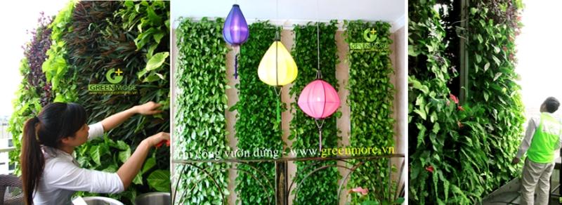 vuon-dung-greenmore3