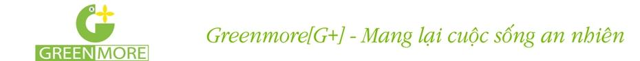 Greenmore - Thiết kế và thi công vườn đứng, cảnh quan, kiến trúc xanh-Việt Nam