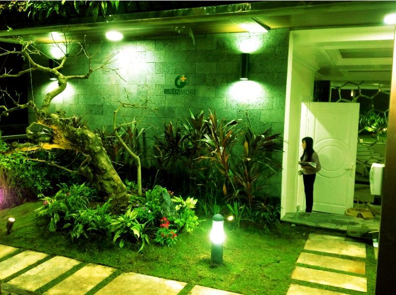 Vườn trên mái cô Dung Nam Định - Greenmore