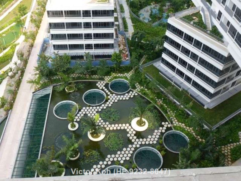 The Interlace - Greenmore (6)