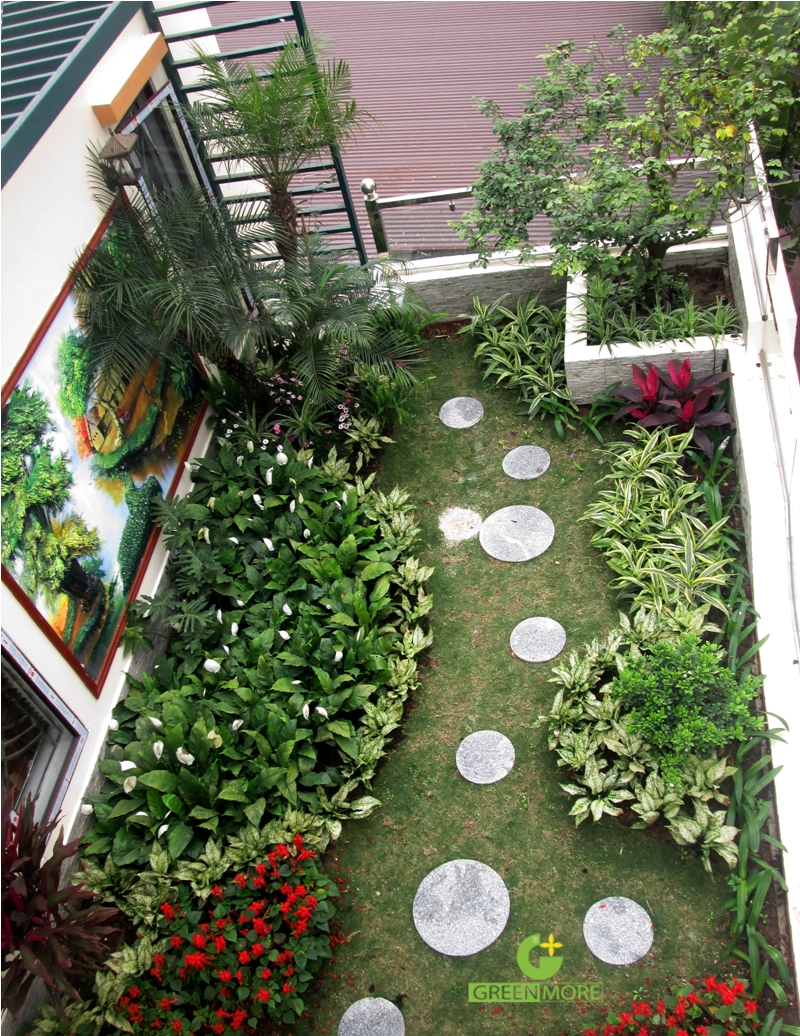 vuon Ninh Hiep - greenmore (9)