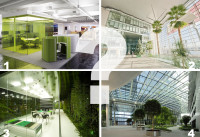 glass officce - greenmore (5)