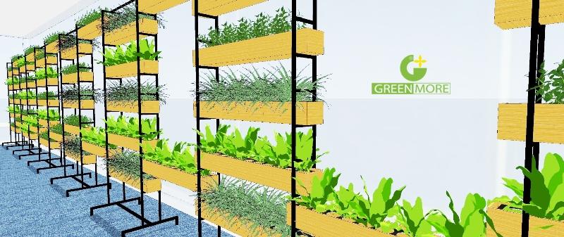 vuon-treo-greenmore (4)