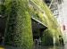 Vườn đứng ấn tượng ở tòa thị chính Seoul