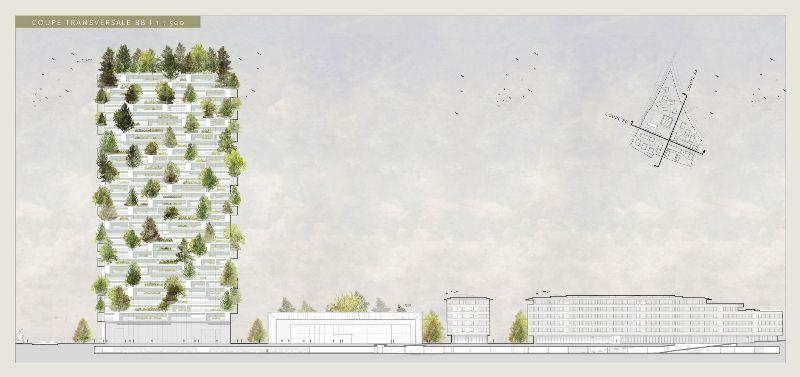 la tour des cedres -greenmore (2)