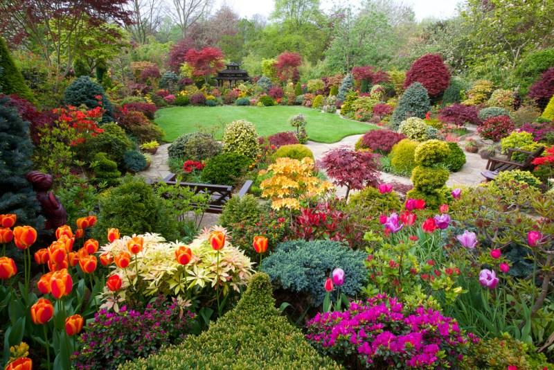 mistake garden - greenmore (4)