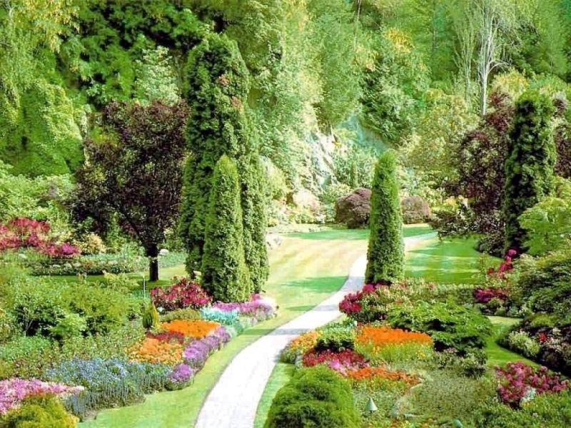 mistake garden - greenmore (5)