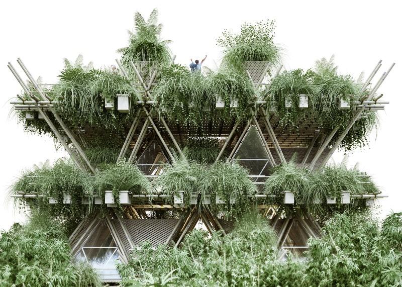 bamboo city - greenmore (5)