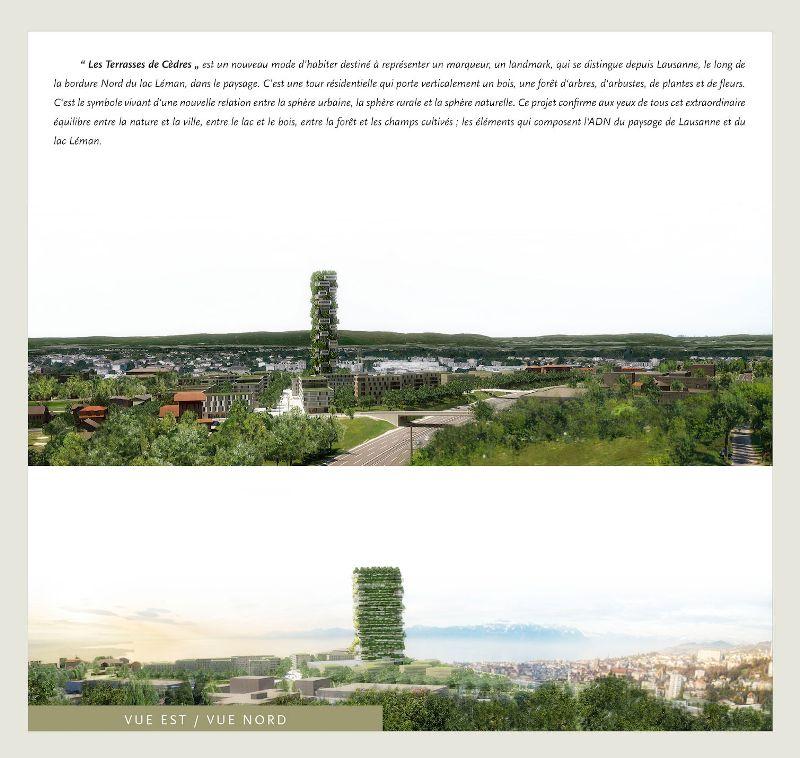 la tour des cedres -greenmore (4)