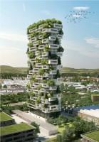 la tour des cedres -greenmore (5)