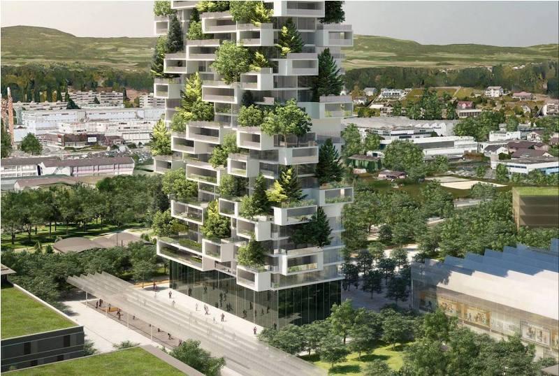 la tour des cedres -greenmore (9)
