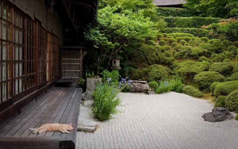 japangarden-greenmore (1)