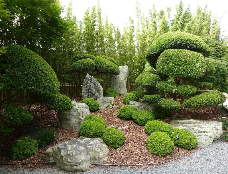 japangarden-greenmore (3)