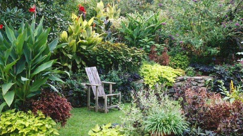 mistake garden - greenmore (10)