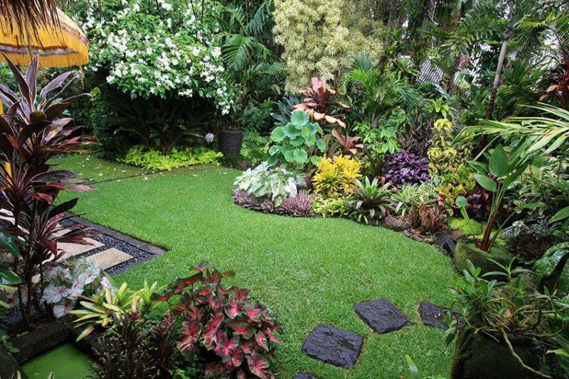 mistake garden - greenmore (2)