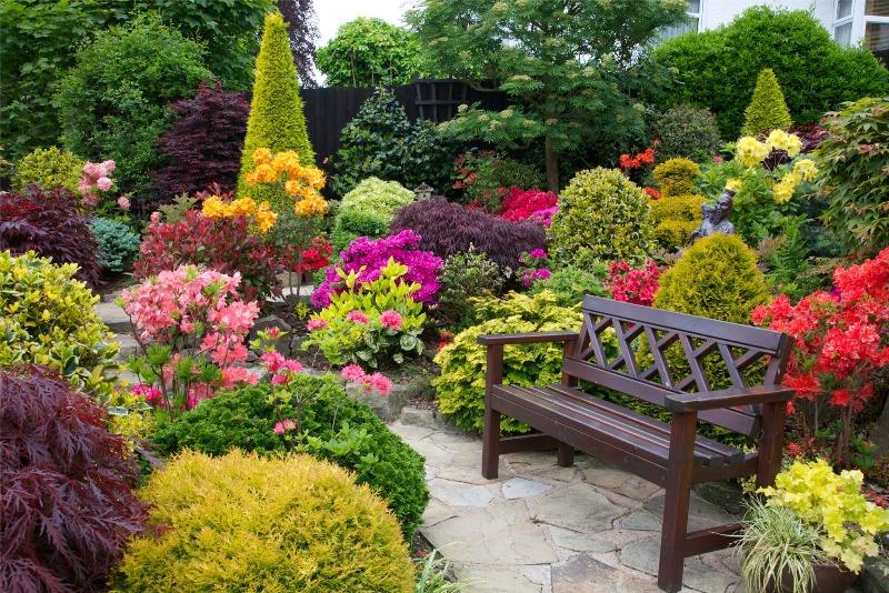 mistake garden - greenmore (7)