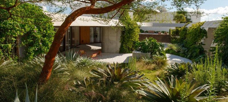 penhouse-garden-greenmore (5)