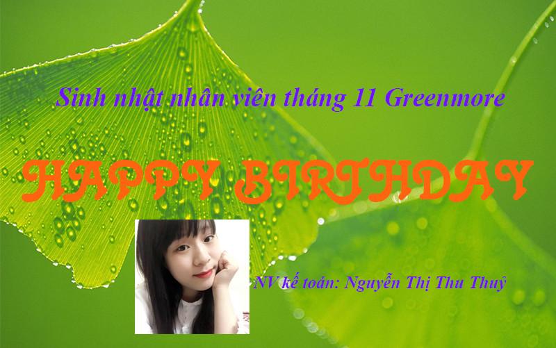 sinh-nhat-nhan-vien-greenmore1