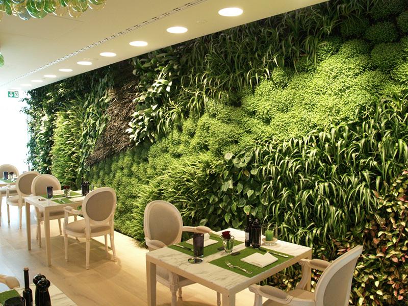 Cách trang trí nhà hàng xanh mát nhờ vườn đứng