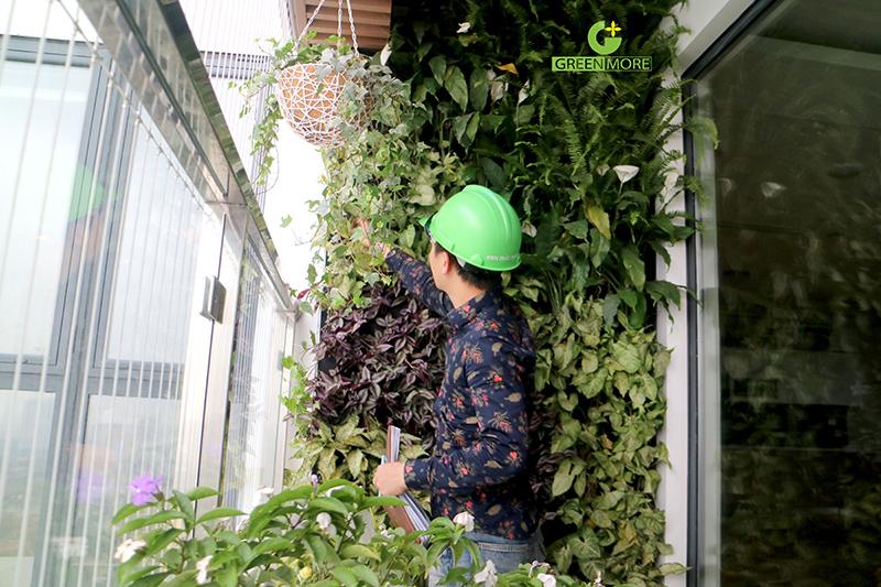 vuon-dung-ban-cong-greenmore-3
