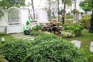 Cách chăm sóc sân vườn tươi tốt trong ngày hè nắng nóng