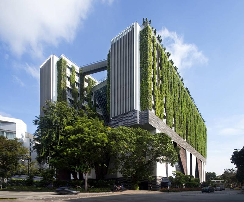 truong-nghe-thuat-WOHA-singapore-greenmore-2