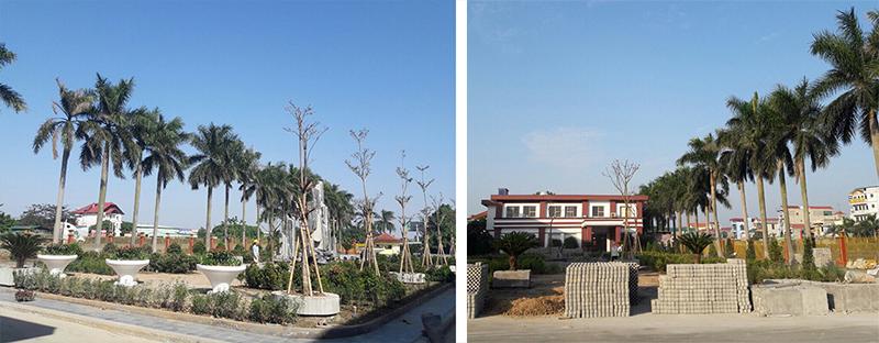thiet-ke-thi-cong-canh-quan-nha-may-tungyang-greenmore-12