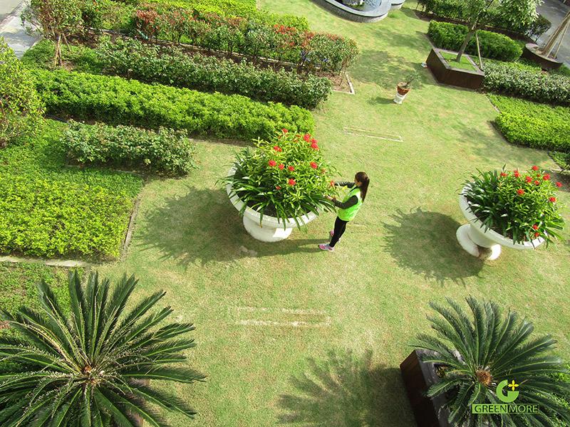 thiet-ke-thi-cong-canh-quan-nha-may-tungyang-greenmore-3