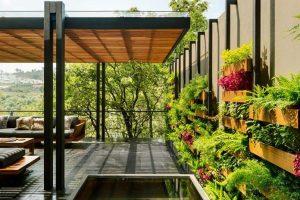 Cấu tạo và các loại vườn đứng, vườn treo