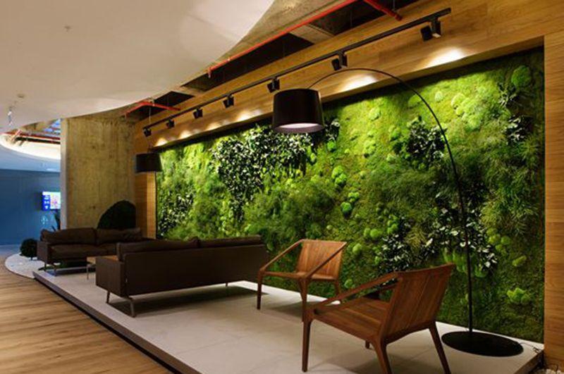 Vườn đứng trong một văn phòng làm việc đẹp là nơi tiếp đón khách hàng hoặc nơi thư giãn cho nhân viên