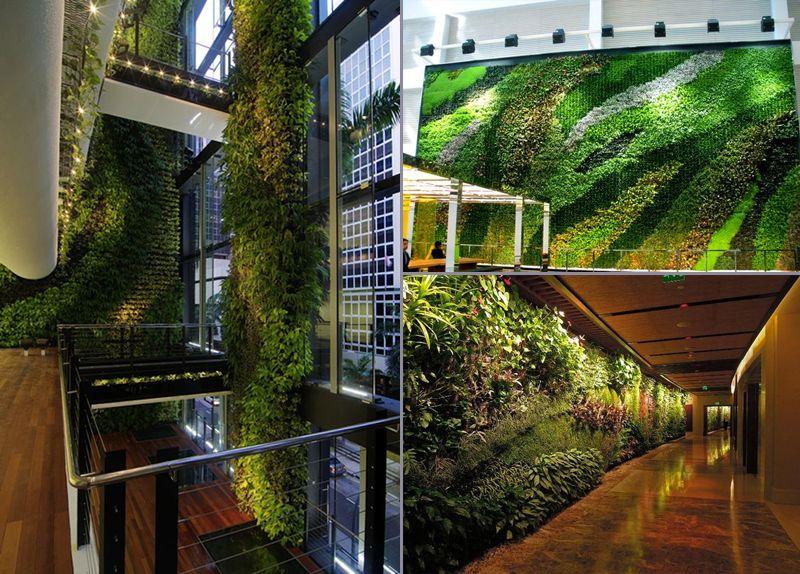 Vườn đứng cho hành lang, sảnh đón khách dành cho những tòa nhà, công trình kiến trúc lớn