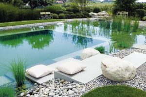 14+ mẫu bể bơi sân vườn thủy sinh cực chất