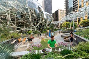 The Spheres: Khám phá văn phòng làm việc xanh như khu rừng nhiệt đới